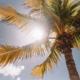 Gezondheidseffecten zon